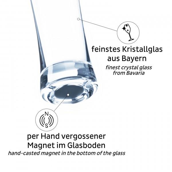 Magnet-Kristallgläser BIER (6er-Set)